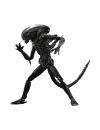 Big Chap Alien , 18 cm