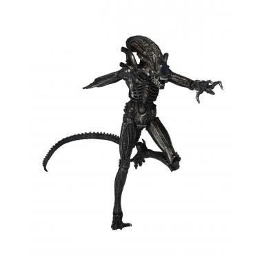 Aliens Seria 5, Genocide Alien Black 18 cm