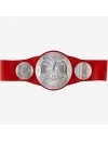 Centura Wrestling, WWE Raw Tag Team Championship