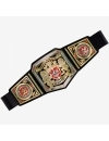 Centura WWE United Kingdom Championship
