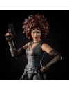 Deadpool Marvel Legends Series Action Figure 2020 Marvel's Domino 15 cm