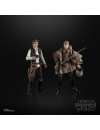 Star Wars The Black Series Heroes of Endor Figures Exclusive