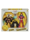 Marvel Legends Action Figure 2-Pack Storm & Marvel's Thunderbird 15 cm