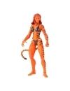 Marvel Legends Series Action Figure 2022 Marvel's Tigra 15 cm