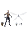 Marvel Legends, Set 6 figurine Avengers 2018 Wave 2, 15 cm