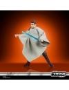 Star Wars Anakin Skywalker Peasant Disguise 10 cm