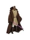 Star Wars Episode I Black Series Lucasfilm 50th Anniversary Action Figure 2021 Mace Windu 15 cm