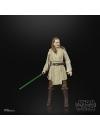 Star Wars Black Series Lucasfilm 50th Anniversary 2021 Qui-Gon Jinn 15 cm