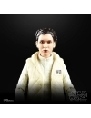 Star Wars Episode V Black Series Action Figures 15 cm 40th Anniversary 2020 Wave 1 Princess Leia Organa (Hoth)