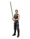 Star Wars HTTE Black Series Lucasfilm 50th Ann. Action Figure 2021 Luke Skywalker & Ysalamiri 15 cm