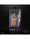 Star Wars Rebels Black Series Action Figure 2020 Hera Syndulla 15 cm
