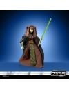 Star Wars The Clone Wars Vintage Collection Action Figure 2022 Luminara Unduli 10 cm