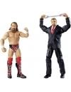 Daniel Bryan & Triple H 17 -  Battle Packs 32
