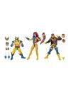 Marvel Legends 80th Anniversary 3-Pack X-Men Wolverine, Jean Grey & Cyclops 15 cm (ianuarie 2020)